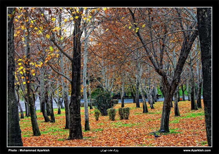 park_melat_tehran
