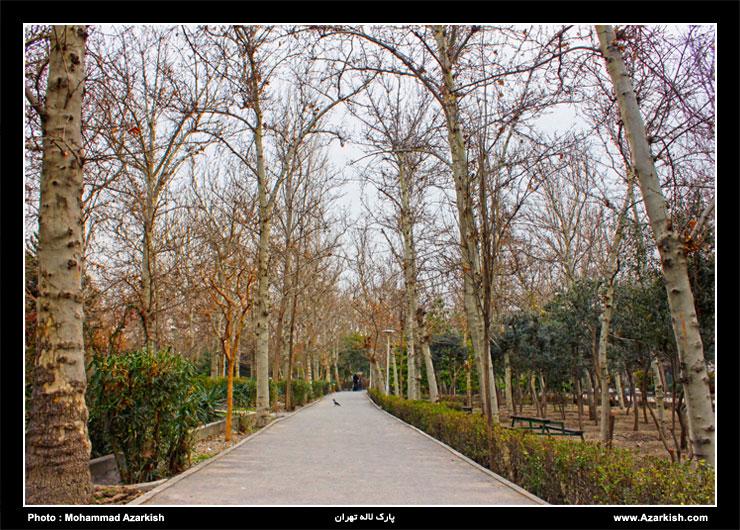 tehran_park_laleh